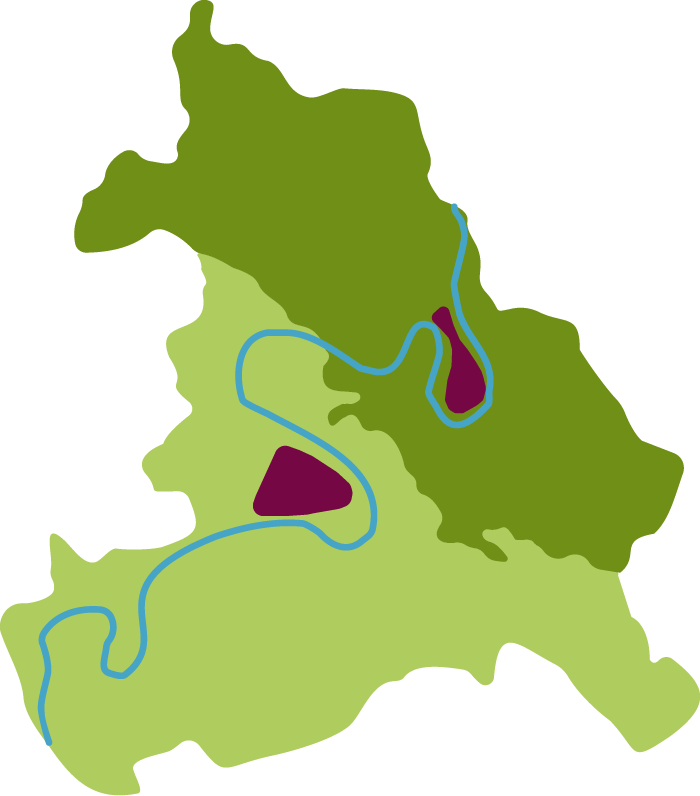 Region LGS Mittelmosel